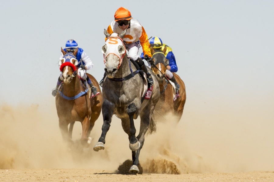 Birdsville, Race 4, Cheers Browe, Tracy O'Hara_05-09-15_389