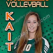 Wheeler Volleyball Banner Samples - 8/21/14 - View 5 Banner Sample proofs for Wheeler Volleyball.