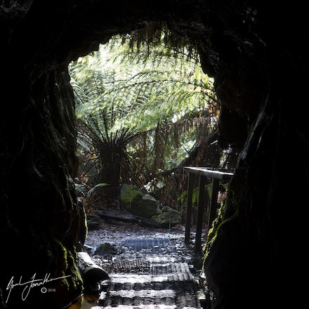 Old Mining Tunnel Tasmania