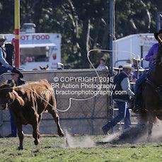 Lang Lang APRA Rodeo 2015 - Breakaway Roping - Slack 1