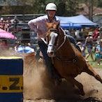 Picton Rodeo Jan  5 2013