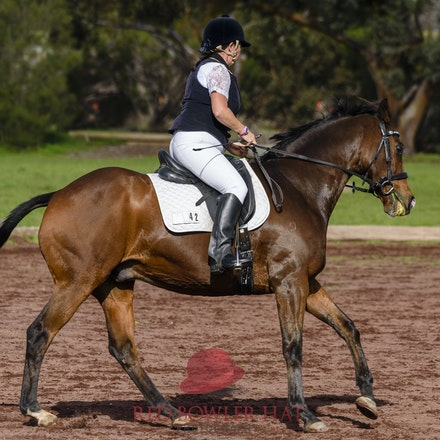 Elcho Park - Midweek Dressage