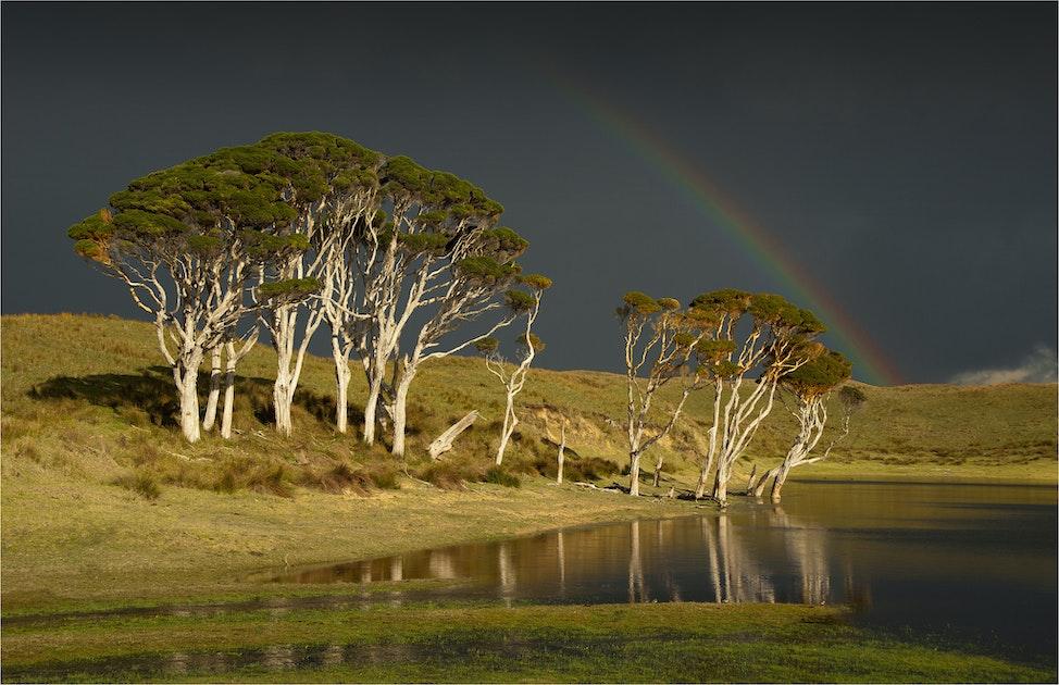 Attrill-Park-Rainbow-KI036-11x17