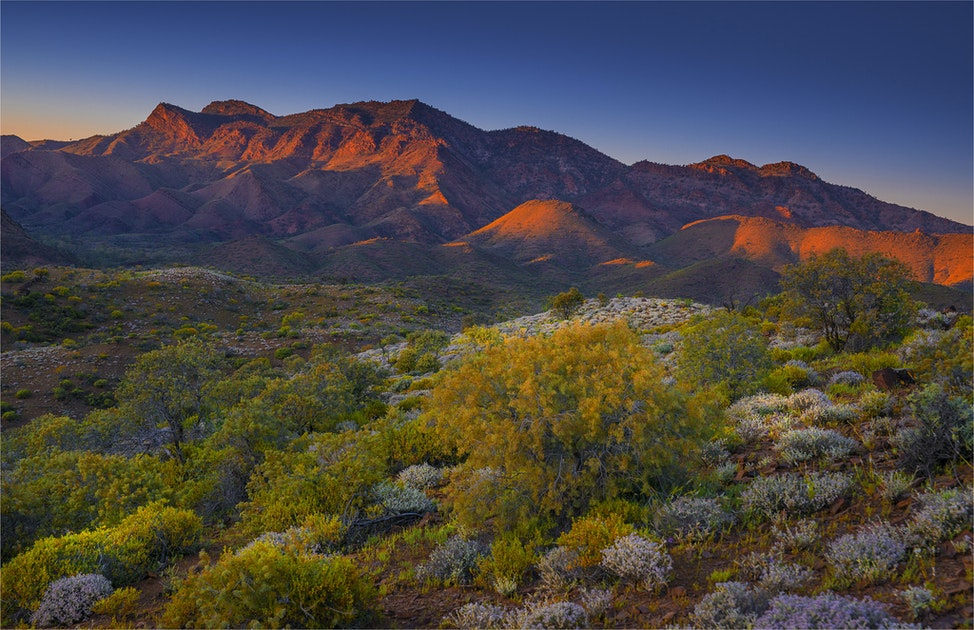 Southern-Flinders-Ranges-2015-17x25-SA0524