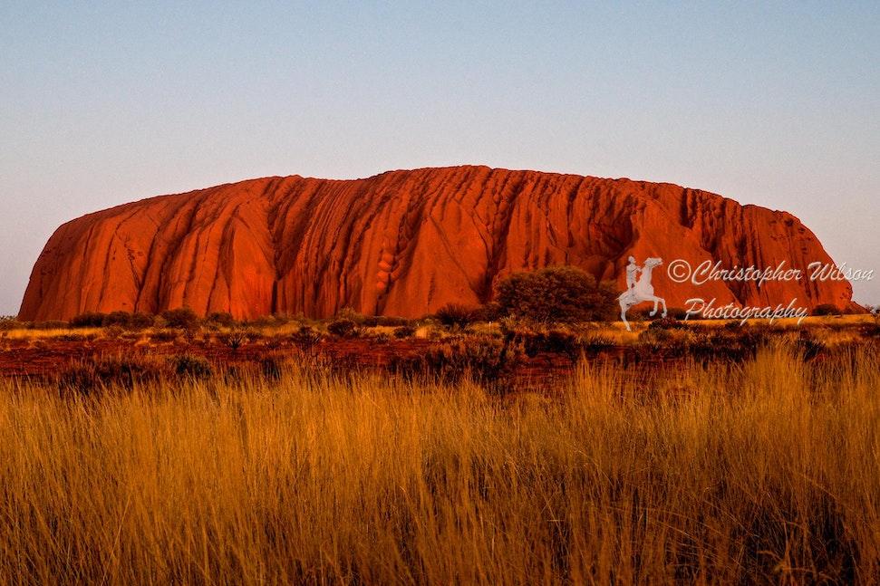 Uluru and Surrounds 039