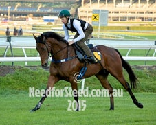 29 SEPT RANDWICK TRACK WORK