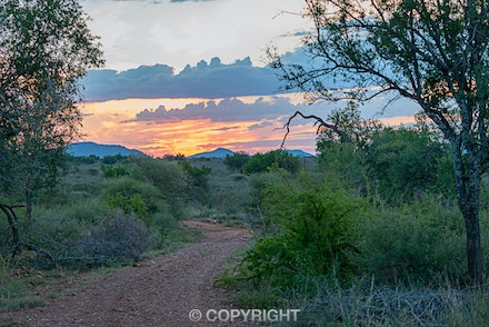 019 Madikwe 270515-6169-Edit - Sunset in the Madikwe Game Reserve in South Africa.