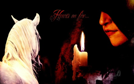 """Hearts on Fire - """"The best and most beautiful things in the world cannot be seen or even touched – they must be felt with the heart."""" Helen Keller. Stallion..."""