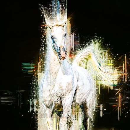 New Year Shining - Bright future, shining, beckoning. Follow...