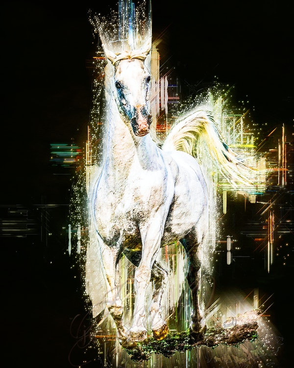 New Year Shining - Bright future, shining, beckoning. Follow...  New Year Shining, a modern art piece featuring the white purebred Arabian stallion,...