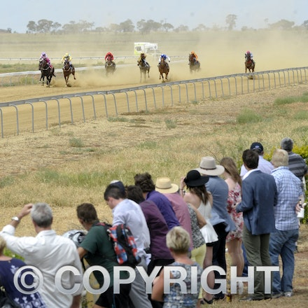 160312_SR29813 - Race 1 at the Longreach Races, Saturday March 12, 2016.  sr/Photo by Sam Rutherford