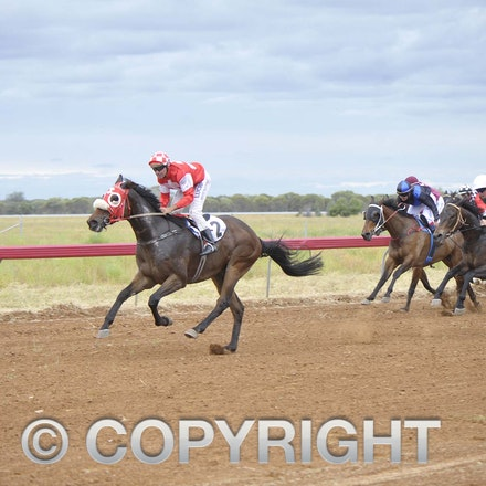 161022_SR20220 - At the 2016 Isisford Races