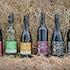 2011 Wines